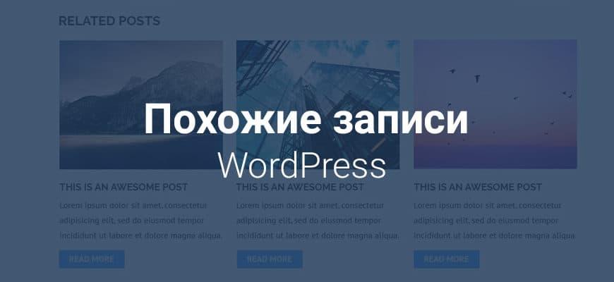 Read more about the article Похожие записи